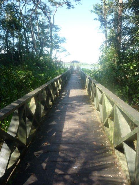 Vista lejana Muelle San Juan de Nicaragua