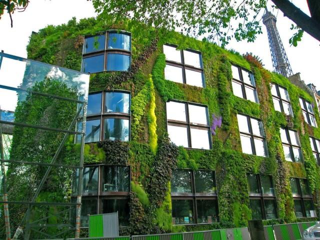 Muro ecológico